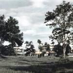 The NAAFI Block and Surrounding Scenery, 1951/2.
