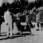 RAF Police Dog Handlers Being Inspected.